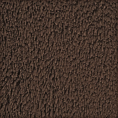 Anji Mountain Bamboo Rug, Co Bamboo Shag 2 x 3 Coffee Bean AMB0601-0023