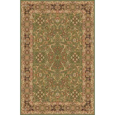Home Dynamix Golden Age 8 x 10 Antique Green 6207 6207ANGR