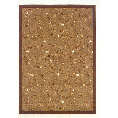 Kane Carpet American Dream 9 x 13 Stratosphere The Galaxy 8008/47