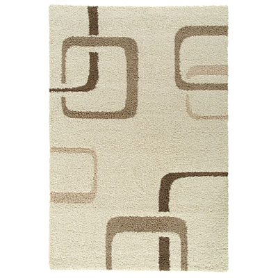 Kane Carpet Supreme Shag 4 x 6 Boxes Neutral 6400/05