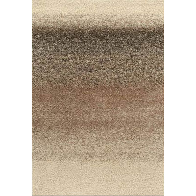 Kane Carpet Visions Shag 2 x 3 Ombre Salt and Pepper 6008-01