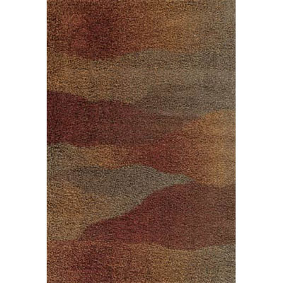 Kane Carpet Visions Shag 2 x 3 Waves Rusty 6004-39