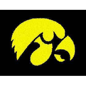 Logo Rugs Iowa University Iowa Entry Mat 2 x 2 IOEM3