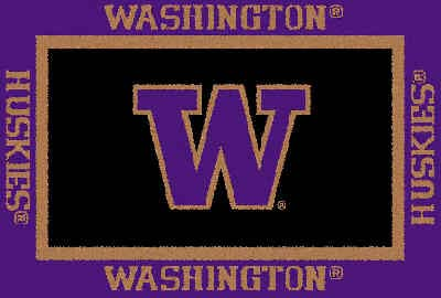 Logo Rugs Washington University Washington Area Rug 4 x 6 WAAR4