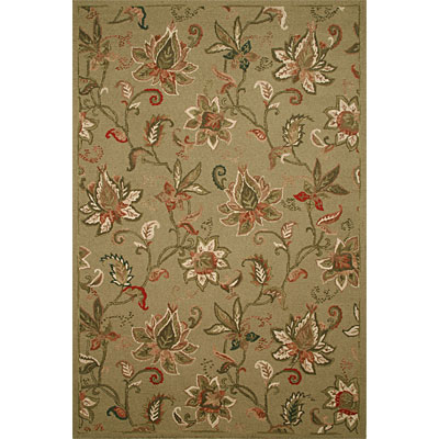 Rizzy Rugs Country 5 x 8 CT-22 CT-22
