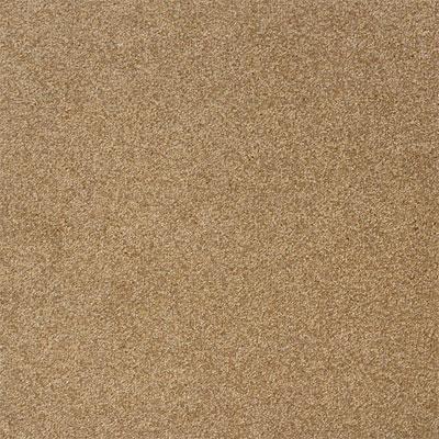 Legato Carpet Tiles Home Depot 28 Images