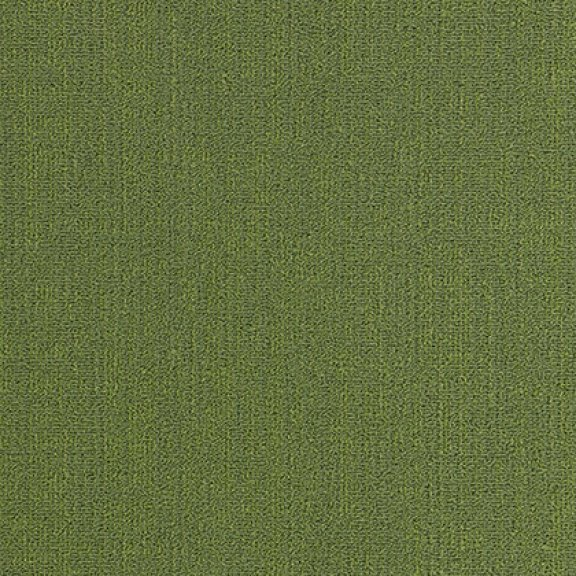 Mannington Color Anchor 24 x 24 Meadow