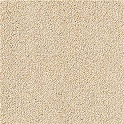 Mannington Color Canvas Almond
