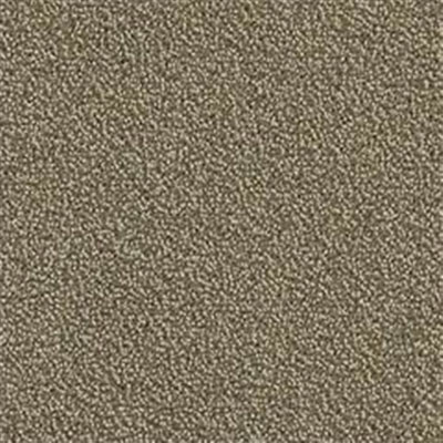Mannington Color Canvas Aspen