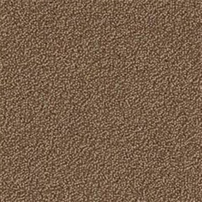 Mannington Color Canvas Bronze