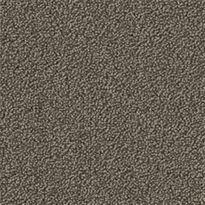 Mannington Color Canvas Gunmetal