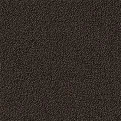 Mannington Color Canvas Java