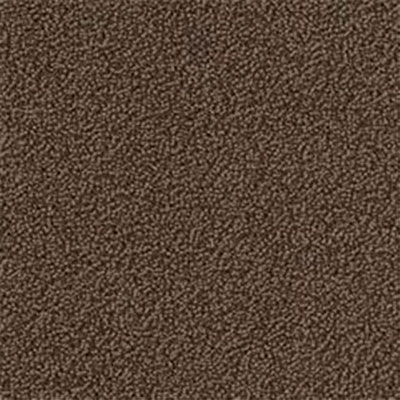 Mannington Color Canvas Mocha