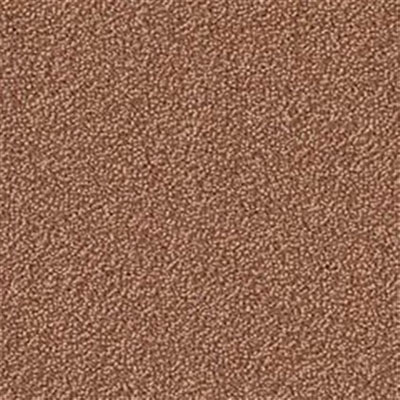 Mannington Color Canvas Sandstone