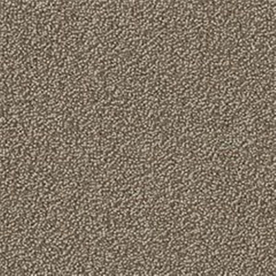 Mannington Color Canvas Taupe