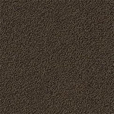 Mannington Color Canvas Woodland