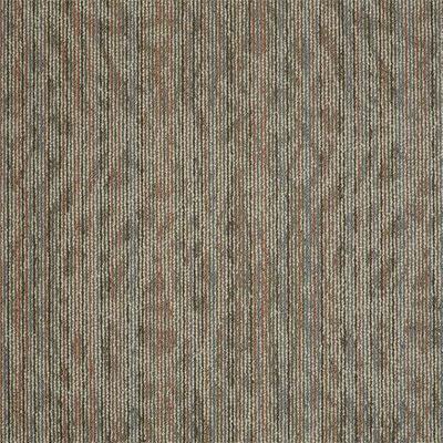 Philadelphia Commercial By Shaw Amaze Carpet Tiles Colors