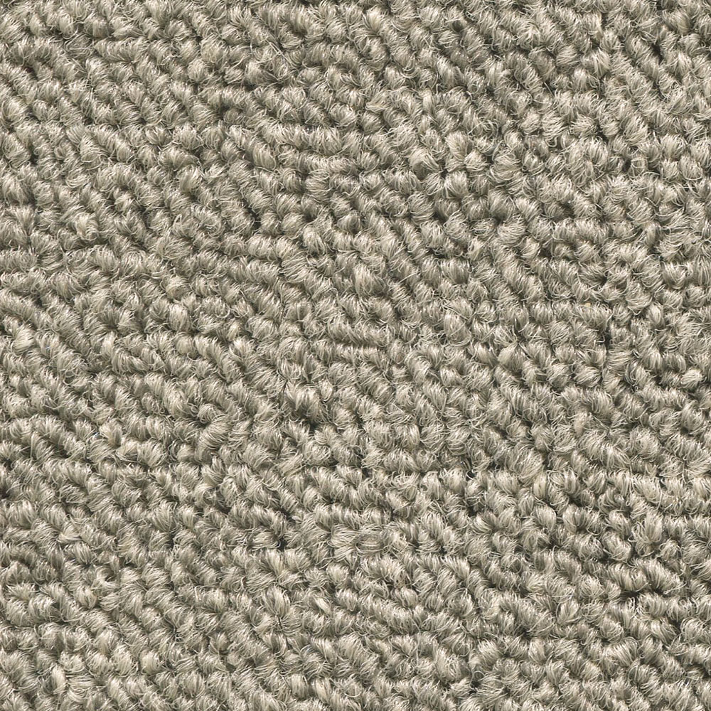 Simply Carpet Exciting Nitty Gritty