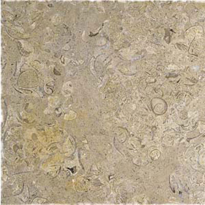 Alfagres Tumbled Marble 12 x 12 Polished Cafe Pinto PC201