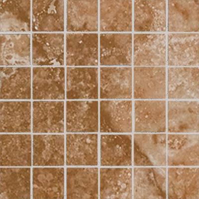 American Florim Natural Selection Mosaic Evolution (Noce) 1093575