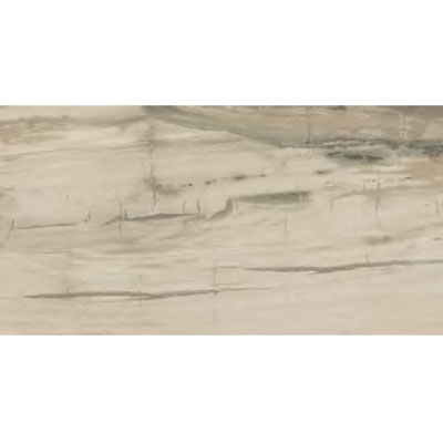 Ascot Petrified Wood 12 x 24 Beige