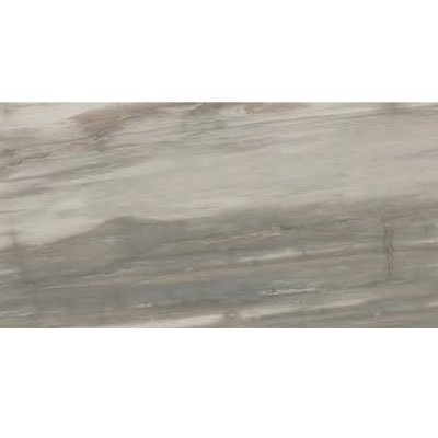 Ascot Petrified Wood 12 x 24 Grey