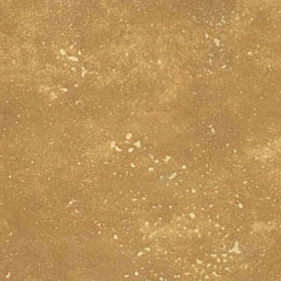 Avaire Choice 12 x 12 Raw Tile Porcelain Encanto AVAENCANTORT