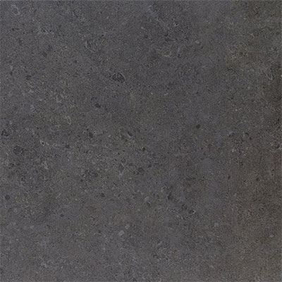 Daltile Dignitary 12 x 24 Textured Governor Black