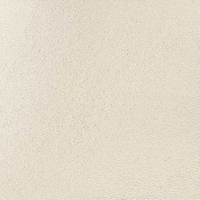 Daltile Ever 24 x 48 Light Polished Moon EV01 24481L