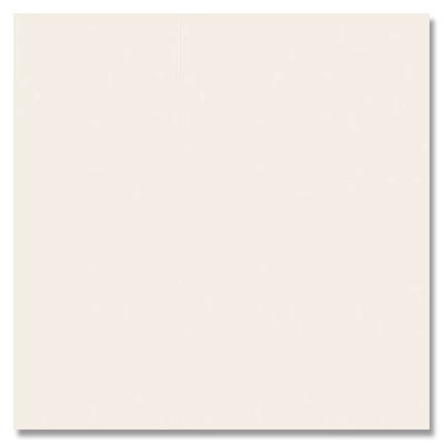 Daltile Gallery (Next) 12 x 24 Unpolished Wall Tile White J500 1224W1P