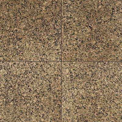 Daltile Granite 12 x 12 Polished Desert Brown G518 12121L