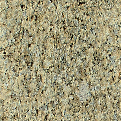 Daltile Granite 12 x 12 Polished Giallo Ornamental G331 12121L