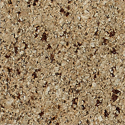 Daltile Granite 12 x 12 Polished Paradise Beach G190 12121L