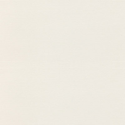 Daltile Identity Grooved Visual 12 x 24 Light Polish Paramount White Grooved MY30 12241L