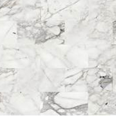 Daltile Marble 12 x 12 Polished Venetian Calacatta Polished
