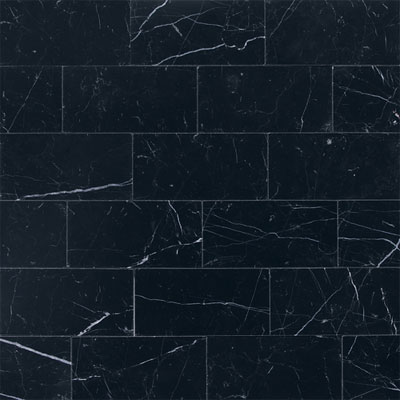 Daltile Marble 3 x 6 (All the other Marbles) Nouveau Nero Polished M312361L