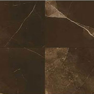 Daltile Marble Attache 24 x 24 Polished Amani