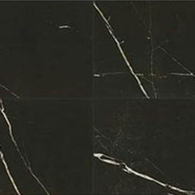Daltile Marble Attache 24 x 24 Polished Nero