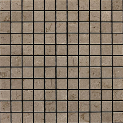Daltile Marble Mosaic 1x1 Honed Silver Screen M744 11MS1U