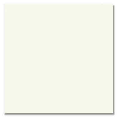 Daltile Match-Point 12 x 24 Unpolished Pure White