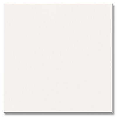 Daltile Modern Dimensions 4 1/4 x 8 1/2 Gloss Arctic Whtie Gloss 0190 48MOD1P1
