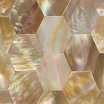 Daltile Ocean Jewels Hexagon Brown Lip OJ05 22HX1L