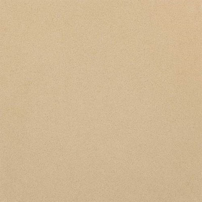 Daltile One Quartz 12 x 12 Harvest Grains NQ0312121L