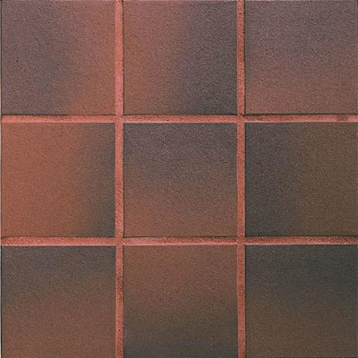 Daltile Quarry Textures 6 x 6 (Non Abrasive) Red Flash 0T02