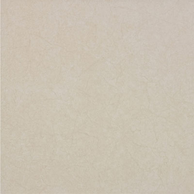 Daltile Rectified Ceramic Assortment 24 x 24 Gales Beige Z830 2424R1P2
