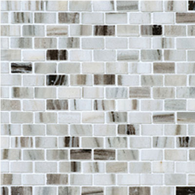 Daltile Stone Decorative Mosaics Panaro Blend Brick Joint Polished DA90 581BJMS1L