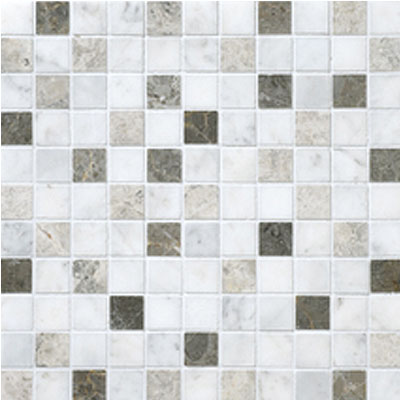 Daltile Stone Decorative Mosaics Tirso Blend Honed Mosaic DA88 11MS1U