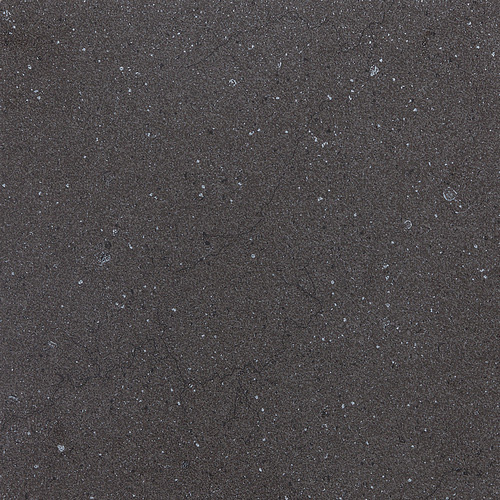 Daltile Torreon 12 x 24 Coal TN99 12241P