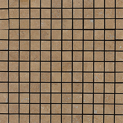 Daltile Travertine Natural Stone Tumbled Mosaics 1 x 1 Noce T311 1MSTS1P