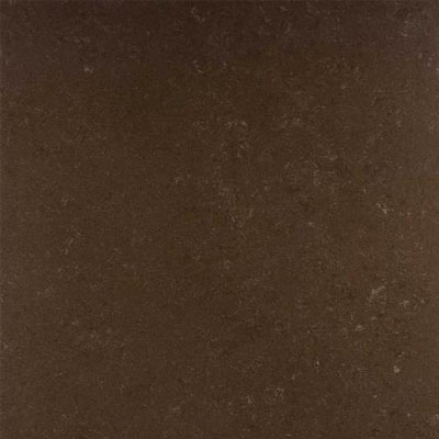 Daltile Unity Polished 24 x 24 Coffee P404 24241L